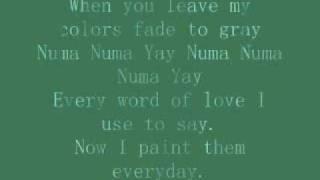 Ozone- Numa Numa lyrics (color version)