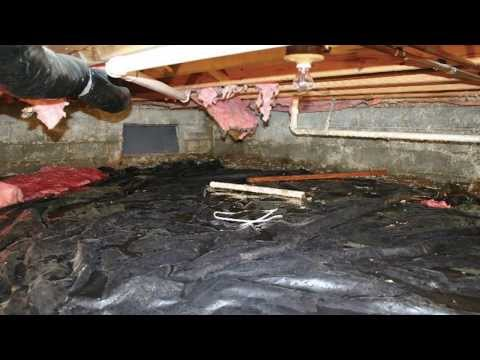 Musty Odors in the Crawl Space Can Be a Health Hazard