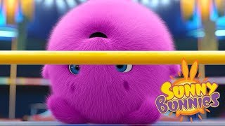 Cartoons for Children | THE TALLEST BUNNY | SUNNY BUNNIES | Funny Cartoons For Children
