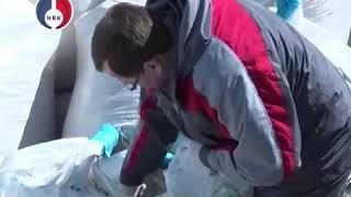"""Проверка свалки химических отходов """"Утилис"""" в Новоуральске. Рабочая группа."""