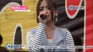 EDOT ARISNA   SELIMUT BIRU TA And TA Live Duwari 2019