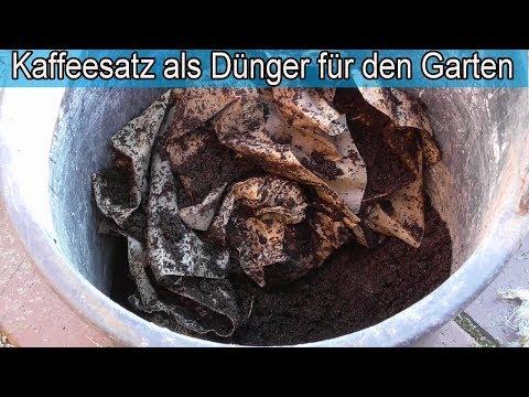 Kaffeesatz als Dünger für den Garten & Pflanzen / Umweltfreundlicher Kaffee Dünger selber machen