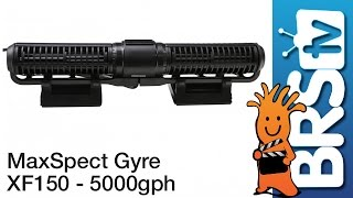 MaxSpect Gyre XF150 Flow Dynamics