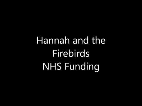 Summer of 69 by Hannah and the Firebirds