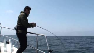 EJ6041で電動鯛ラバ。valgoで大鯛!玄界灘「秀幸」
