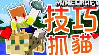 【Minecraft】茶杯生存Ep115 🐟抓貓的小技巧🐟【當個創世神】
