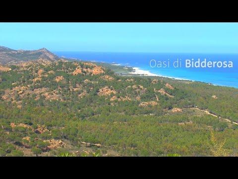 Sardinia | Oasi di Bidderosa