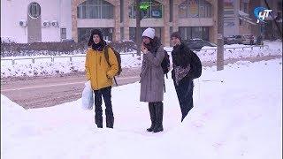 22 класса в семи школах Великого Новгорода отправлены на карантин по гриппу и ОРВИ