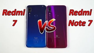 Сравнение - Redmi 7 VS Redmi Note 7 от Xiaomi !