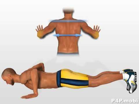 Le spasme du muscle levant le testicule