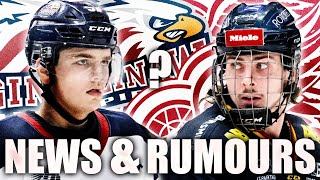 Red Wings Prospects Update & Rumours: Albin Grewe SIGNS W/ Saginaw + Cole Perfettis Improvements