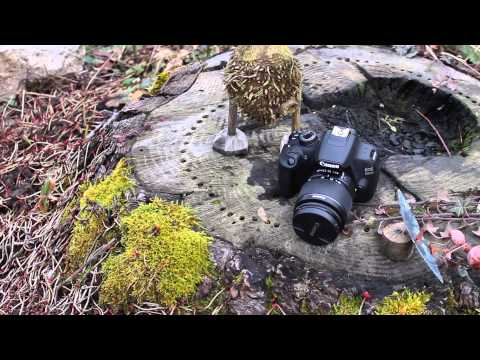 Canon EFS 18-55mm Kit-Objektiv Review - iTeacher