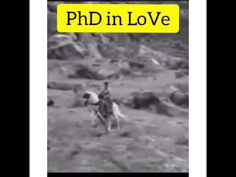 PhD in LoVe