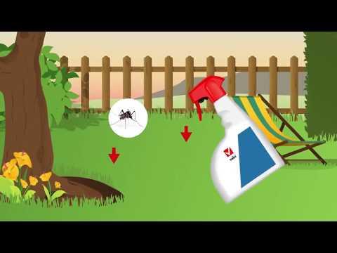 Csepp a paraziták antitoxin