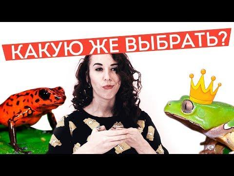 Герой меча и магии 1 русская версия скачать