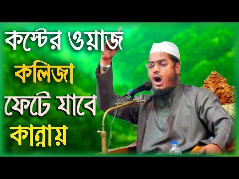 পুরাতন ঢাকা কাপালেন   হাফিজুর রহমান সিদ্দিকী   Hafizur Rahman Siddki 2019   Bangla New Waz 2019