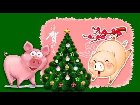Свинина в год  свиньи. Китайский Новый Год?