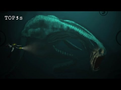 5 Most Mysterious Underwater Sounds Ever Recorded