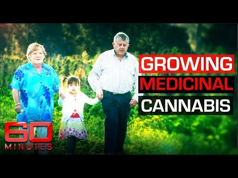 Grandparents illegally growing cannabis to save granddaughter with epilepsy [14min] (2019)