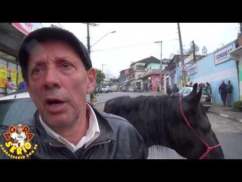 Caminhão da Prefeitura atropela Cavalo de Raça Mangalarga Marchador