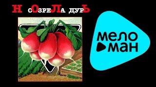 Ноль - Созрела дурь   (Альбом 2003)