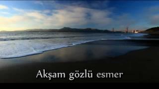 Sezen Aksu - Hoşgeldin (2009) + Şarkı Sözü (HD)