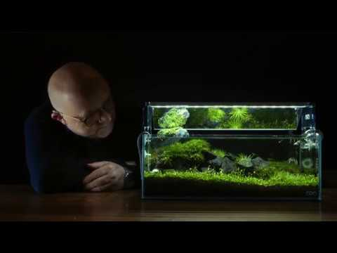 Creating a nano aquascape [35:16]