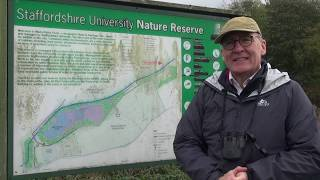 Staffordshire University Nature Reserve