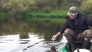 Снасти для ловли щуки на живца кружки