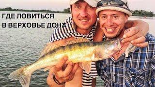Ростов н дону х арпачин рыбалка отдых
