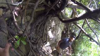 preview picture of video 'Climbing down Aba Wavine Cyrique in Dominica - 2014 - GoPro Black'