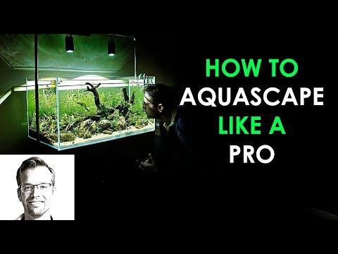 How to AQUASCAPE a NATURE AQUARIUM - The Easy Way!