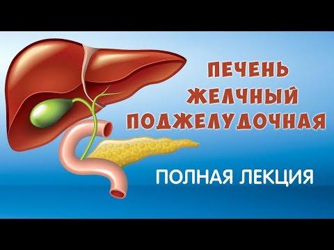 Может ли из-за болезни печени расти живот