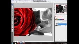 урок фотошопа из чб цветную