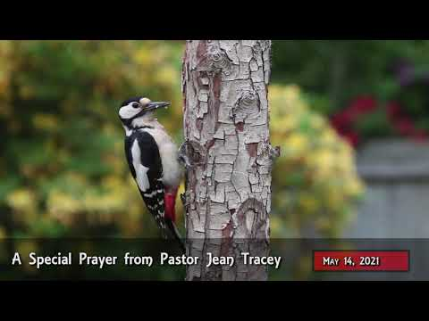 2021-May-14 - Pastor Jean Tracey Prayer