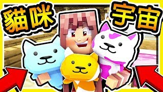 Minecraft 超萌貓咪【統治世界】😂 !! 史上最甜的⭐羽神腐文⭐ !! 超爆笑【尷尬症】大爆炸XD !! 全字幕