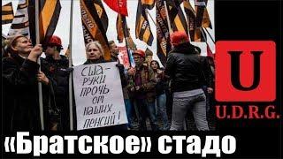 """""""Братское"""" стадо"""