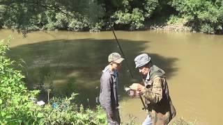 Ловля сачком в мутной воде весной