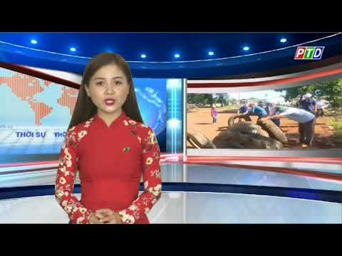 Trung tâm y tế huyện Đăk Glong ra quân phòng chống dịch sốt xuất huyết
