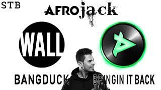 Afrojack - Bringin' It Back x Bangduck (STB Extended Mashup)