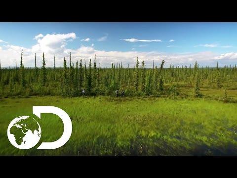 Video trailer för The Last Alaskans | Extended Trailer