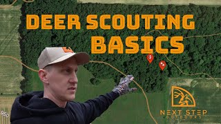How to Scout a New Hunting Property - Deer Scouting Tips