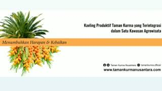 preview picture of video 'Taman Kurma, Tamankurmasamboja, Manfaat & potensi Tamankurmasamboja, Potensi Passive Income Tks,'