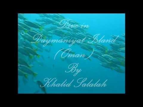 Daynamiat Inseln, Tauchvideo, Daymaniyat Inseln,Oman