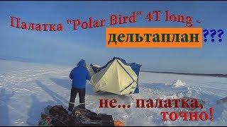 Polar bird 4t long обзор
