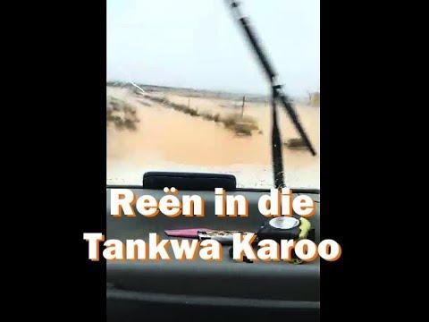 As dit reën in die Tankwa Karoo…
