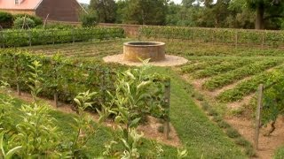 How To Layout A Vegetable Garden   P. Allen Smith Classics