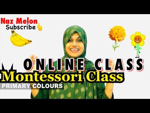 Pre-school online class #Montessori#kg Primary colours for kg montessori