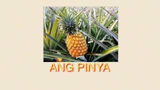 VIRAL: SHOCKING! PAANO NAGKASYA YUN? | PINYA GIRL | PINEAPPLE GIRL