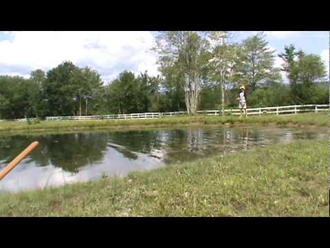 Largemouth Bass Fly Fishing With Mice / Mouse